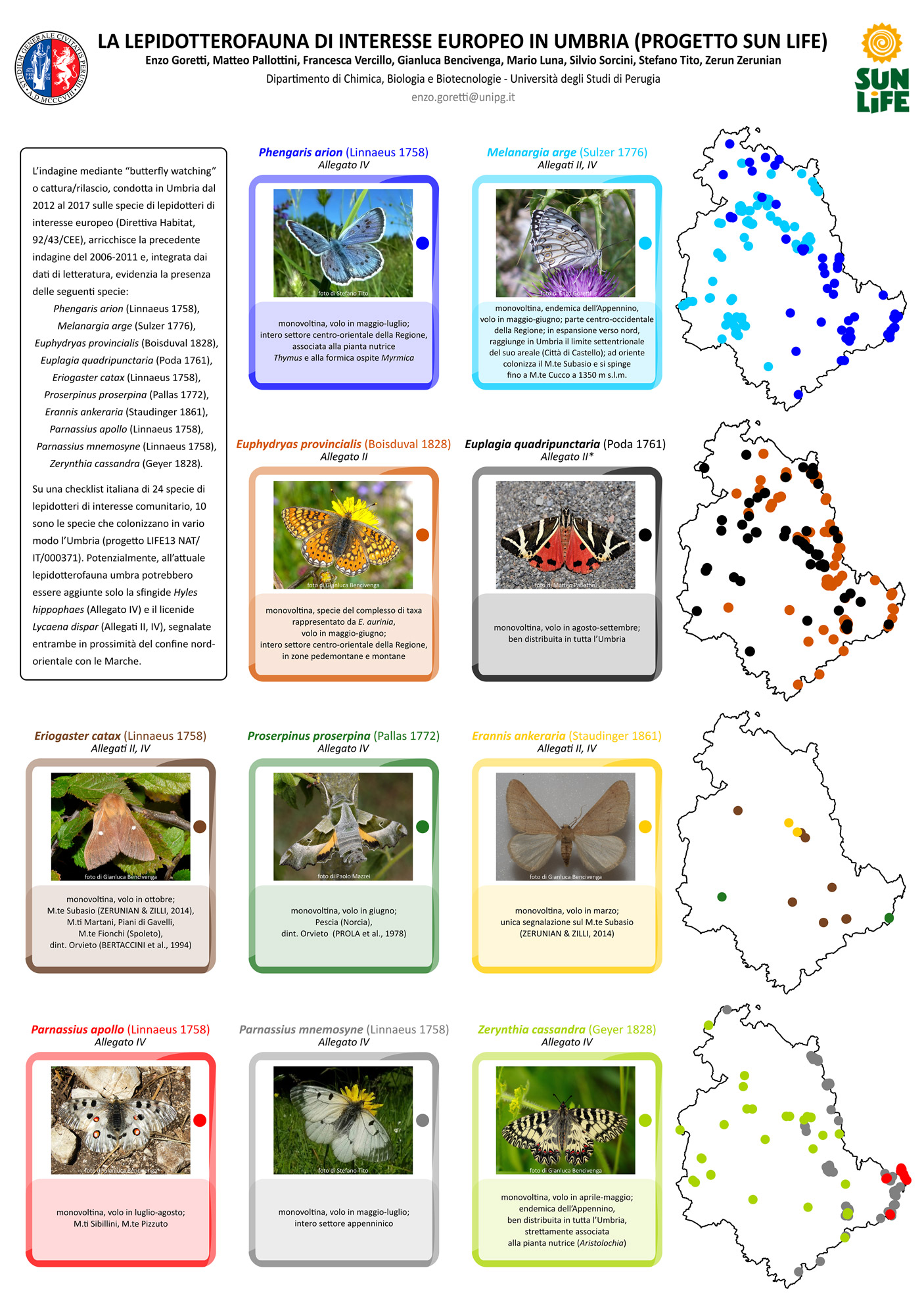 Lepidotteri-di-interesse-europeo-in-Umbria