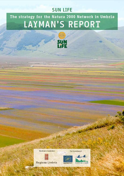 icona Copertina Layman's Report ENGLISH